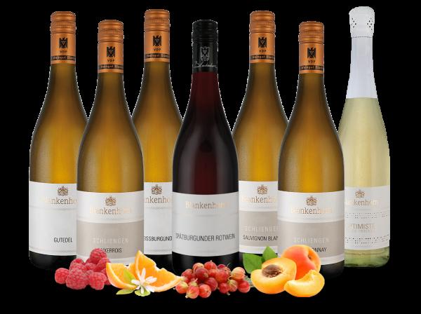 Kennenlernpaket Weingut Blankenhorn aus Baden