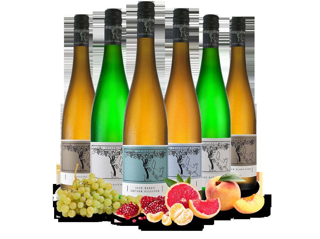Kennenlernpaket Weißweine vom Weingut Friedrich Becker aus der Pfalz12,89€ pro l jetztbilligerkaufen