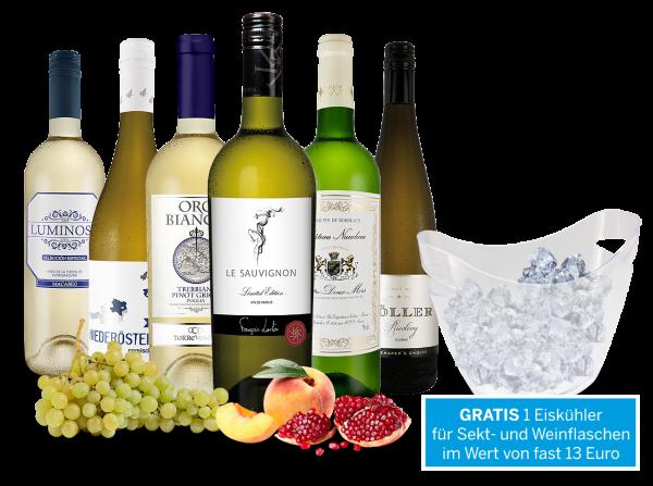 Vorteilspaket Weißwein-Reise mit Eiskühler gratis