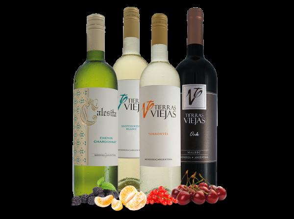 Probierpaket Familia Falasco aus Argentinien mit 5 Flaschen