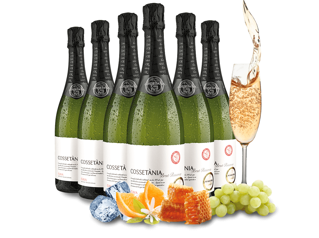 Jämlitz-Klein Düben Angebote Probierpaket 6 Flaschen Cava Cossetània Brut Reserva8,89€ pro l
