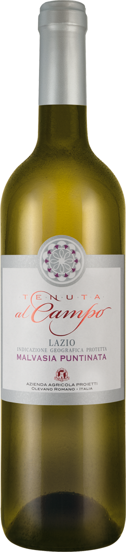 Weißwein Tenuta al Campo Malvasia Puntinata Lazio IGP Latium 9,20€ pro l