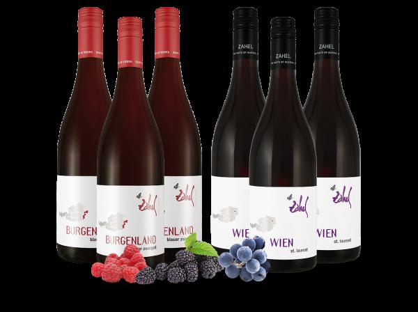 Probierpaket 6 Flaschen Rotweine vom Weingut Zahel