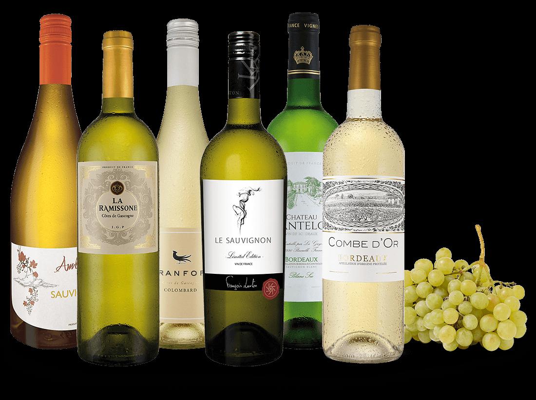 Probierpaket Weißweine der Grande Nation8,89? pro l