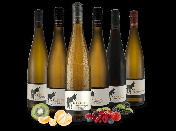 Kennenlernpaket Weingut Bender aus der Pfalz
