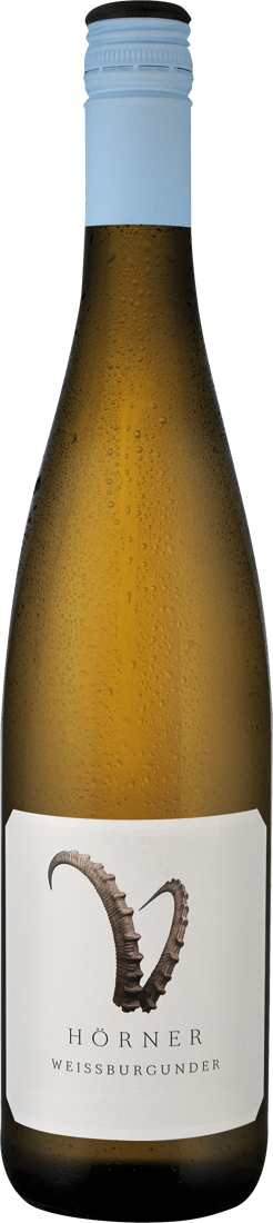 Weißwein Hörner Weißburgunder Steinbock Pfalz 11,33€ pro l