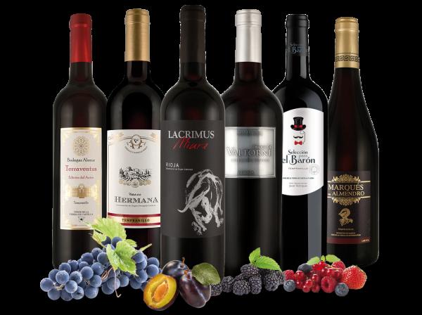 Spanische Sommerweine de Luxe mit 6 Flaschen Rotwein